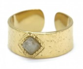 E-D8.2 R110225G S. Steel Ring Stone Adjustable Gold