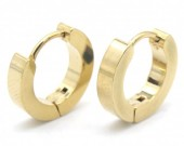 A-B20.3  E301-034 S. Steel Earrings 13x3mm Gold