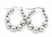A-E2.2 E301-003 Stainless Steel Earrings 2cm Silver