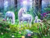 T-N6.1 GD74848 Diamond Painting Set Unicorns 40x30cm