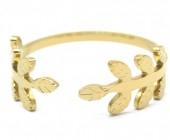 B-D6.3 R2033-004G S. Steel Ring Adjustable Gold