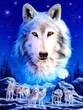 R-B2.2 GS282 Diamond Painting Set Wolfpack 50x40cm