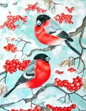 Z-B3.5 RA3141 Paint By Number Set Birds 40x30cm
