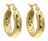 B-D3.1 E012-001G S. Steel Hoop Earrings 20mm