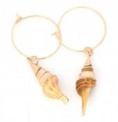 E-E4.1  E304-025 Hoop Earrings with Gold Plated Shell