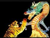 T-H3.1 S824  Diamond Painting Set Tiger-Dragon 50x40cm