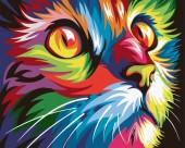 Y-C1.2  MS9259 Paint By Number Set Cat 50x40cm