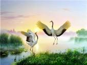 T-E2.1  GD75055 Diamond Painting Set Birds 40x30cm