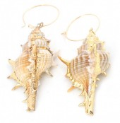 E-D17.5 E304-020 Hoop Earrings with Gold Plated Shell