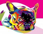 Q-M8.1  S6035 Diamond Painting Set French Bulldog Round Stones 50x40cm