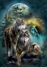 Q-K7.1 S6024 Diamond Painting Set Wolves Round Stones 50x40cm